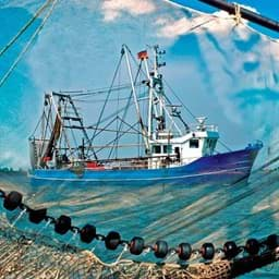 Picture for category Fishery